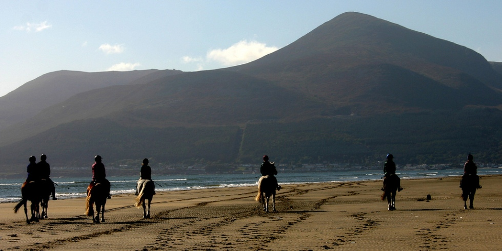 Horse rinding in the Mourne Mountains